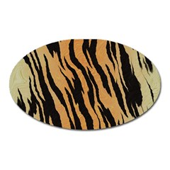 Animal Tiger Seamless Pattern Texture Background Oval Magnet