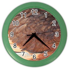Feather Chicken Close Up Red Color Wall Clocks