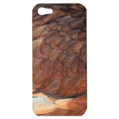 Feather Chicken Close Up Red Apple Iphone 5 Hardshell Case