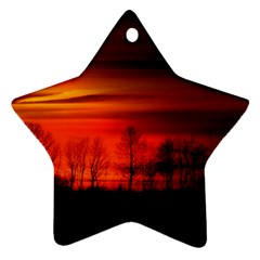 Tree Series Sun Orange Sunset Star Ornament (two Sides)