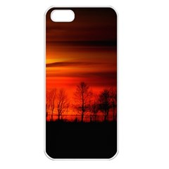 Tree Series Sun Orange Sunset Apple Iphone 5 Seamless Case (white)