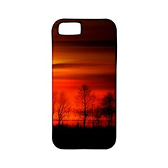 Tree Series Sun Orange Sunset Apple Iphone 5 Classic Hardshell Case (pc+silicone)