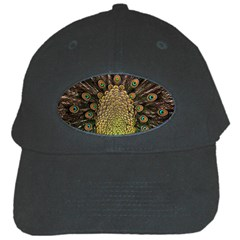 Peacock Feathers Wheel Plumage Black Cap