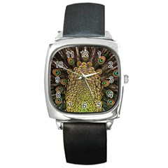Peacock Feathers Wheel Plumage Square Metal Watch