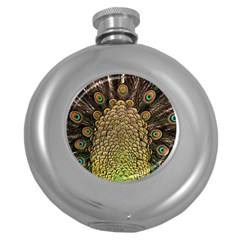 Peacock Feathers Wheel Plumage Round Hip Flask (5 Oz)