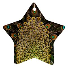 Peacock Feathers Wheel Plumage Star Ornament (two Sides)