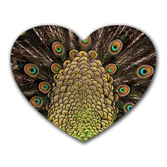 Peacock Feathers Wheel Plumage Heart Mousepads