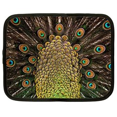 Peacock Feathers Wheel Plumage Netbook Case (large)