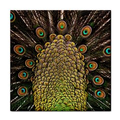 Peacock Feathers Wheel Plumage Face Towel