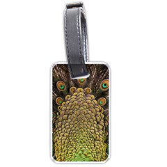 Peacock Feathers Wheel Plumage Luggage Tags (one Side)