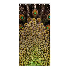 Peacock Feathers Wheel Plumage Shower Curtain 36  X 72  (stall)