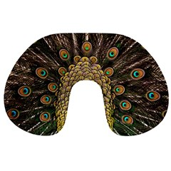 Peacock Feathers Wheel Plumage Travel Neck Pillows