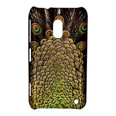 Peacock Feathers Wheel Plumage Nokia Lumia 620