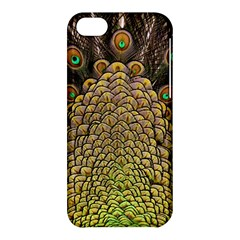Peacock Feathers Wheel Plumage Apple Iphone 5c Hardshell Case