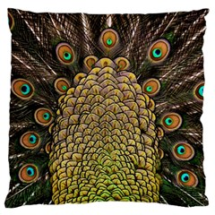 Peacock Feathers Wheel Plumage Standard Flano Cushion Case (one Side)
