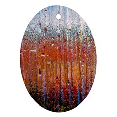 Glass Colorful Abstract Background Oval Ornament (two Sides)