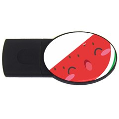 Watermelon Red Network Fruit Juicy Usb Flash Drive Oval (2 Gb)