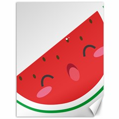 Watermelon Red Network Fruit Juicy Canvas 36  X 48