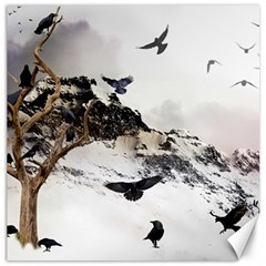 Birds Crows Black Ravens Wing Canvas 20  X 20