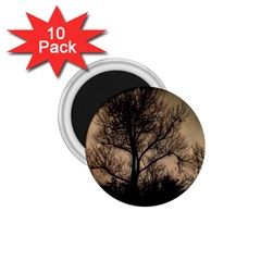 Tree Bushes Black Nature Landscape 1 75  Magnets (10 Pack)