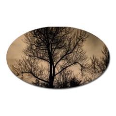 Tree Bushes Black Nature Landscape Oval Magnet