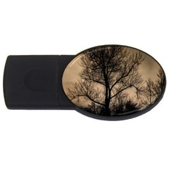 Tree Bushes Black Nature Landscape Usb Flash Drive Oval (4 Gb)