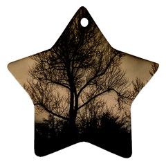 Tree Bushes Black Nature Landscape Star Ornament (two Sides)