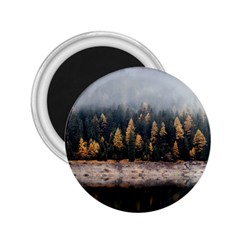 Trees Plants Nature Forests Lake 2 25  Magnets