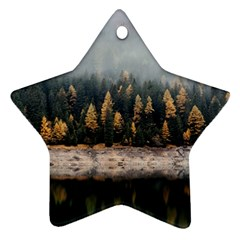 Trees Plants Nature Forests Lake Star Ornament (two Sides)