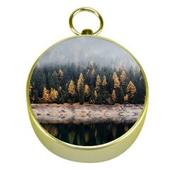 Trees Plants Nature Forests Lake Gold Compasses