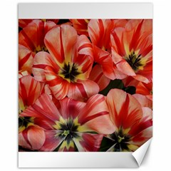 Tulips Flowers Spring Canvas 16  X 20