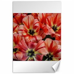 Tulips Flowers Spring Canvas 20  X 30