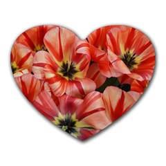 Tulips Flowers Spring Heart Mousepads