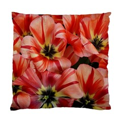 Tulips Flowers Spring Standard Cushion Case (two Sides)
