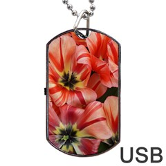 Tulips Flowers Spring Dog Tag Usb Flash (one Side)