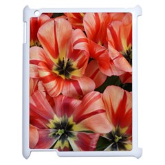 Tulips Flowers Spring Apple Ipad 2 Case (white)