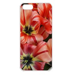 Tulips Flowers Spring Apple Iphone 5 Seamless Case (white)