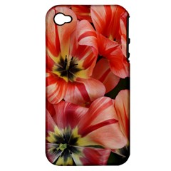 Tulips Flowers Spring Apple Iphone 4/4s Hardshell Case (pc+silicone)
