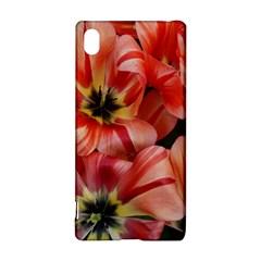 Tulips Flowers Spring Sony Xperia Z3+