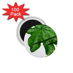 Plant Berry Leaves Green Flower 1 75  Magnets (100 Pack)