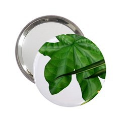 Plant Berry Leaves Green Flower 2 25  Handbag Mirrors