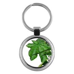 Plant Berry Leaves Green Flower Key Chains (round)