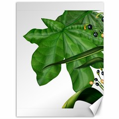 Plant Berry Leaves Green Flower Canvas 36  X 48