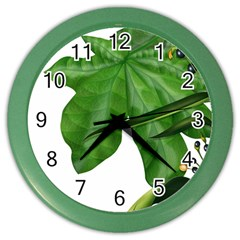 Plant Berry Leaves Green Flower Color Wall Clocks