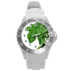 Plant Berry Leaves Green Flower Round Plastic Sport Watch (l)
