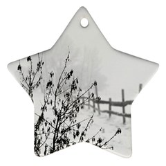 Snow Winter Cold Landscape Fence Star Ornament (two Sides)