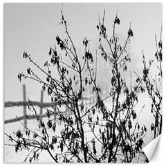 Snow Winter Cold Landscape Fence Canvas 16  X 16