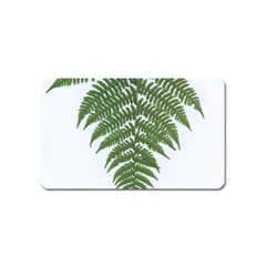 Boating Nature Green Autumn Magnet (name Card)