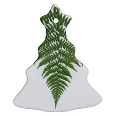 Boating Nature Green Autumn Ornament (christmas Tree)