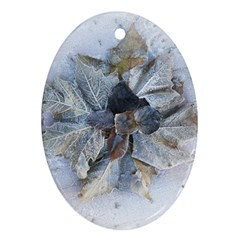 Winter Frost Ice Sheet Leaves Ornament (oval)